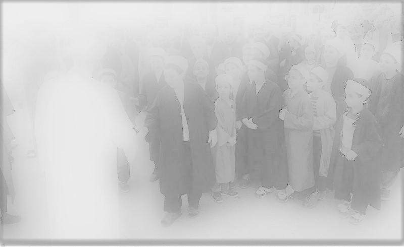 Sosyal bütünleşme açısından din: Din-şeriat-toplum