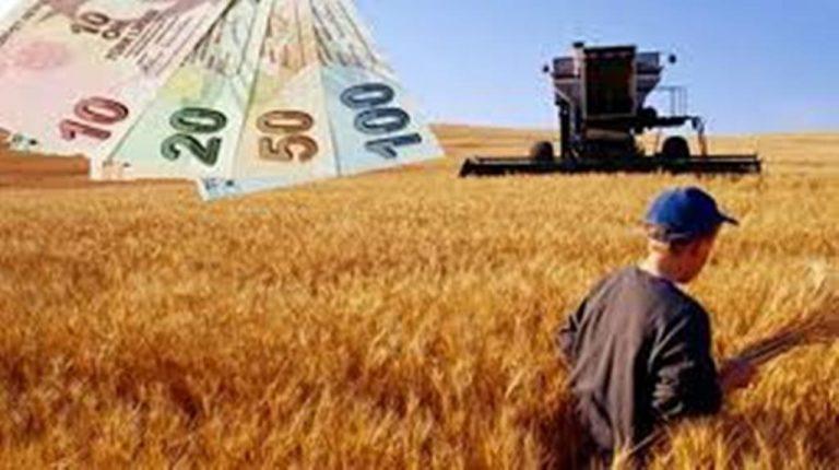 çiftçi, köylü, tarım