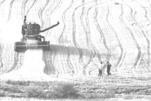 Topraktan kente tarımsal burjuvazi: Sebepler