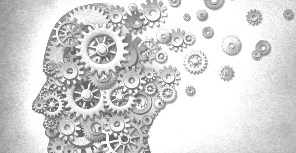 Fikir sistemi nedir?