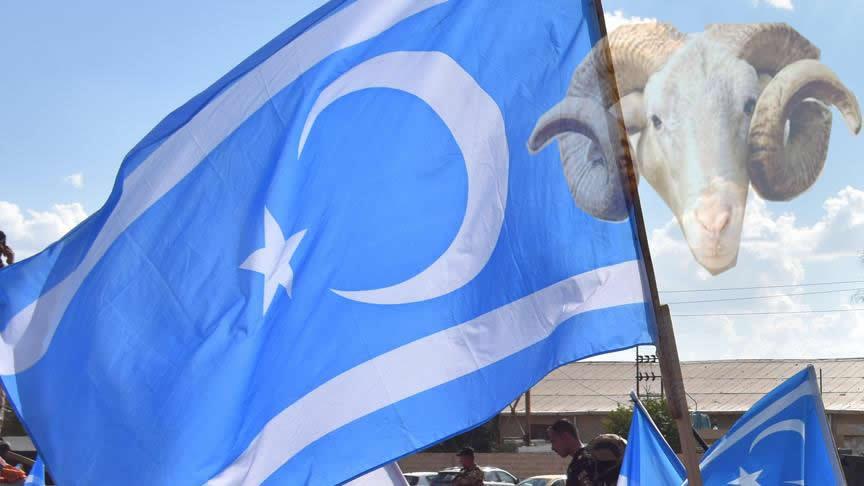 Kurbanlar Türkmen kardeşlerimize