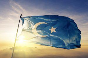 Doğu Türkistan ve Uygur Türkçesinin sorunları