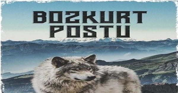 Mahmut Yıldırım; Bozkurt Postu
